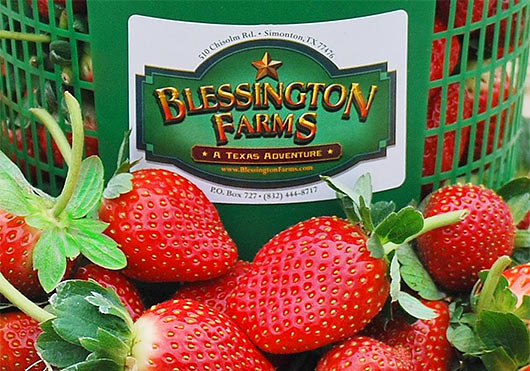 blessington farms pic